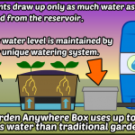 Zero Water Waste, Amazing Growth Rates